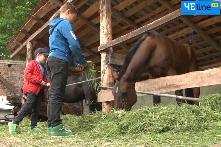Кінна терапія: в Чернігові в районі міськсаду діє іподром для найменших (Відео)