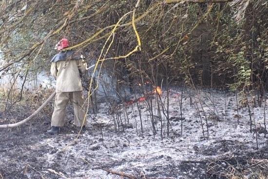 Упродовж доби рятувальники Чернігівщини ліквідували п'ять пожеж і знищили два снаряди (Фото)