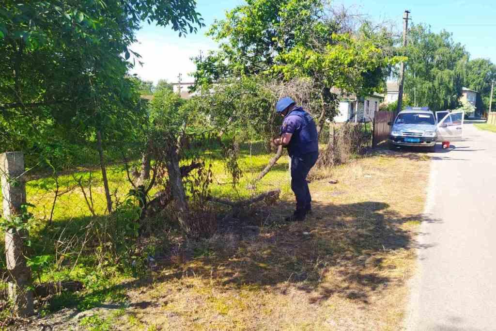 Піротехніки Чернігівщини знищили ручну гранату та артилерійський снаряд (Фото)