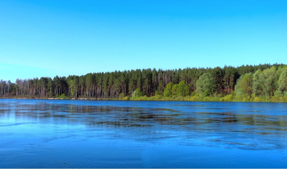 Острови Чернігівщини: куди поїхати на відпочинок (Фото)