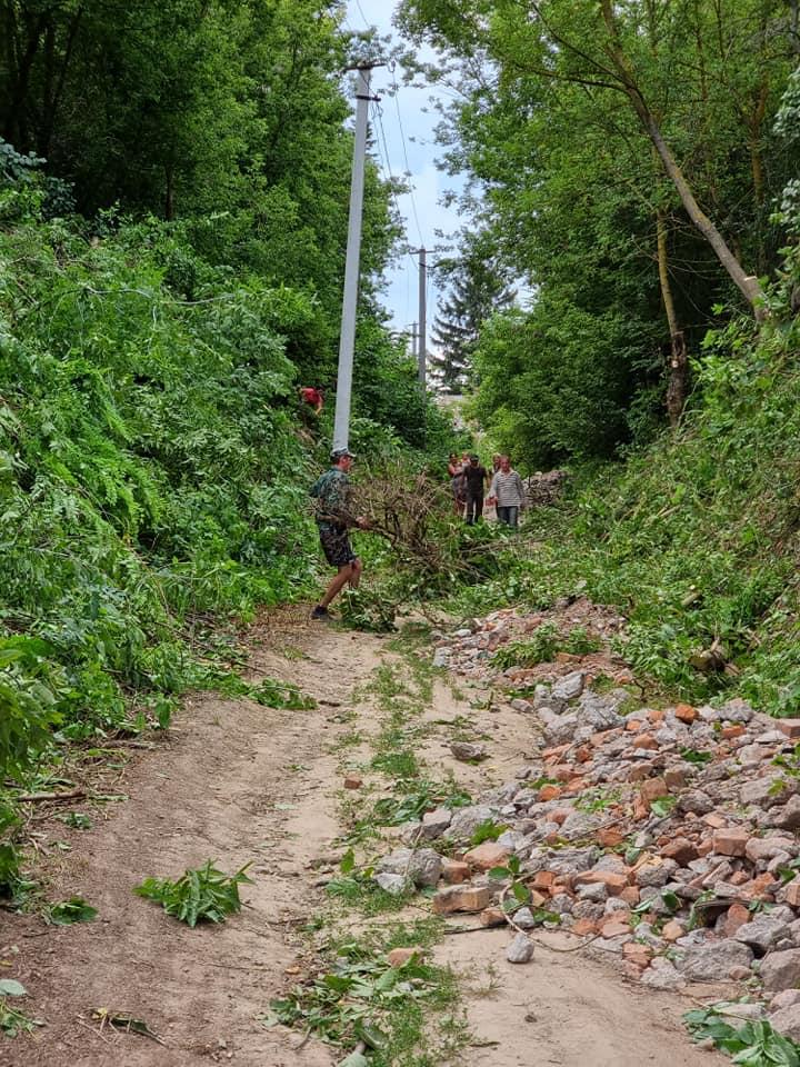 У громаді на Чернігівщині триває бій із заростями (Фото)