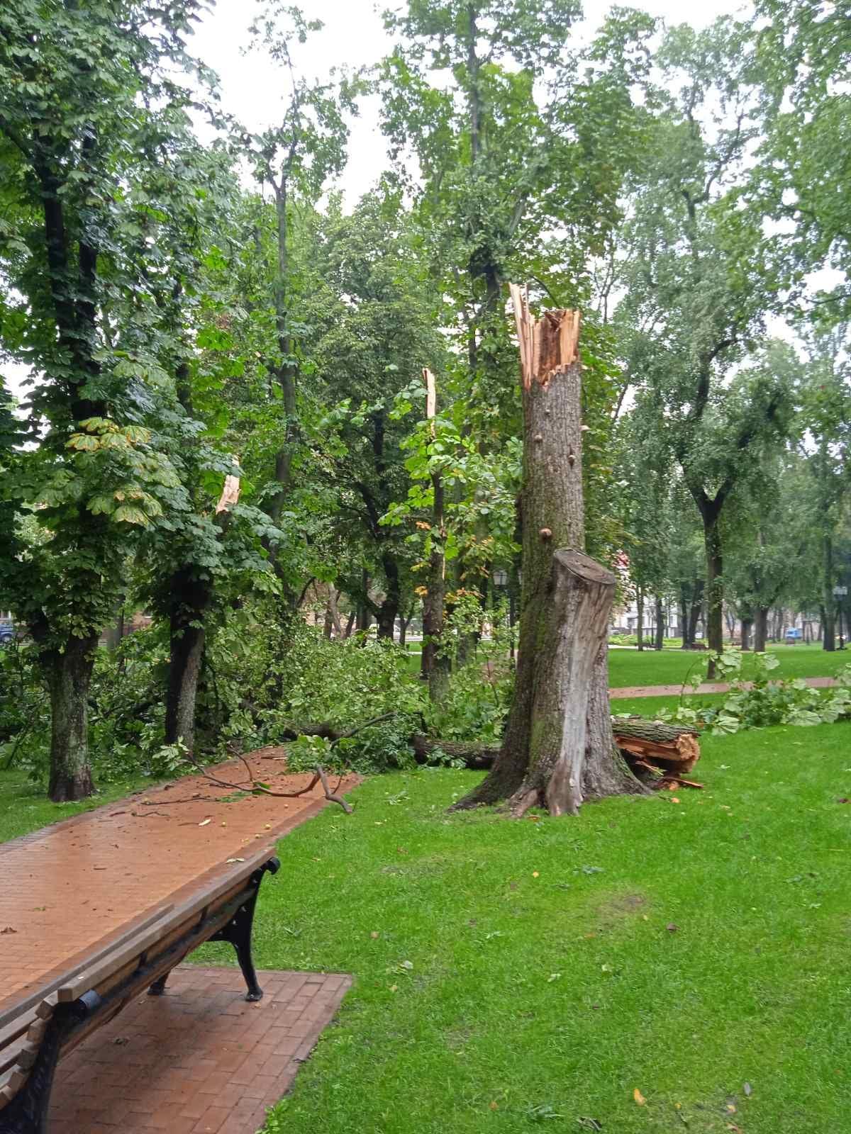 Черніговом пронісся буревій (Фотофакт)