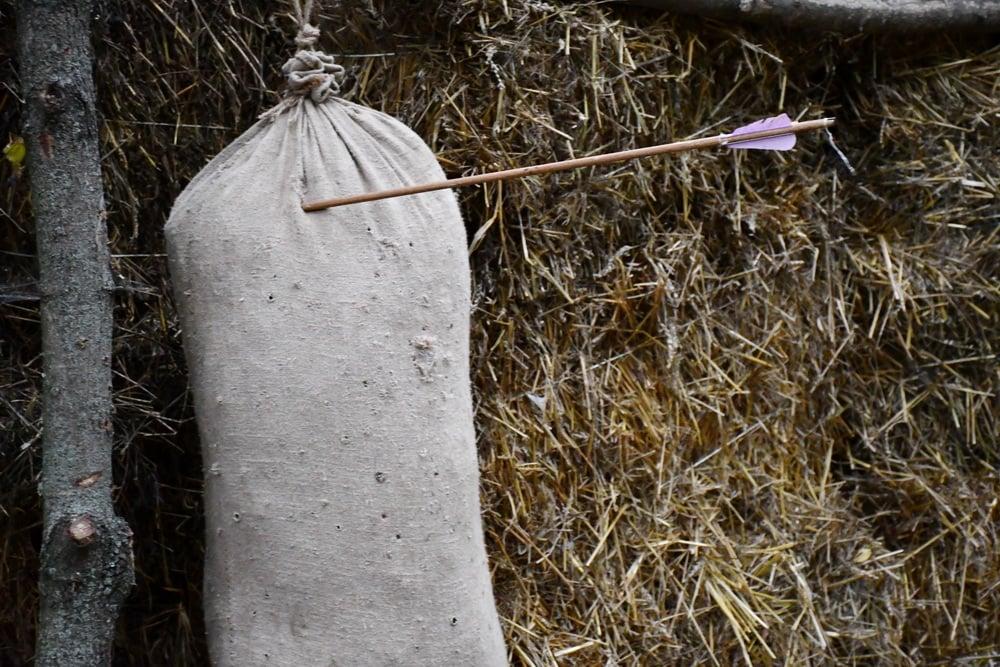 «Інтерактивний скансен» розпочав роботу в Ніжині (Фото)