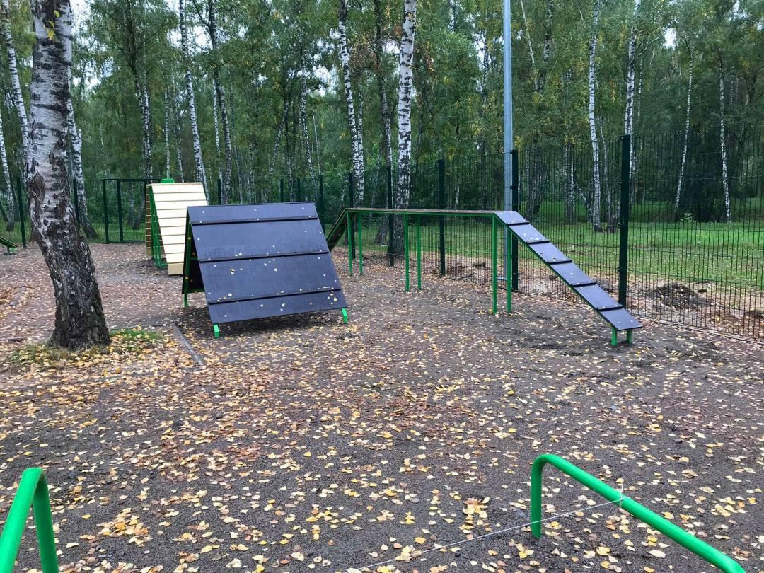 У Чернігові з'явився перший майданчик для вигулу і тренування собак (Фото)