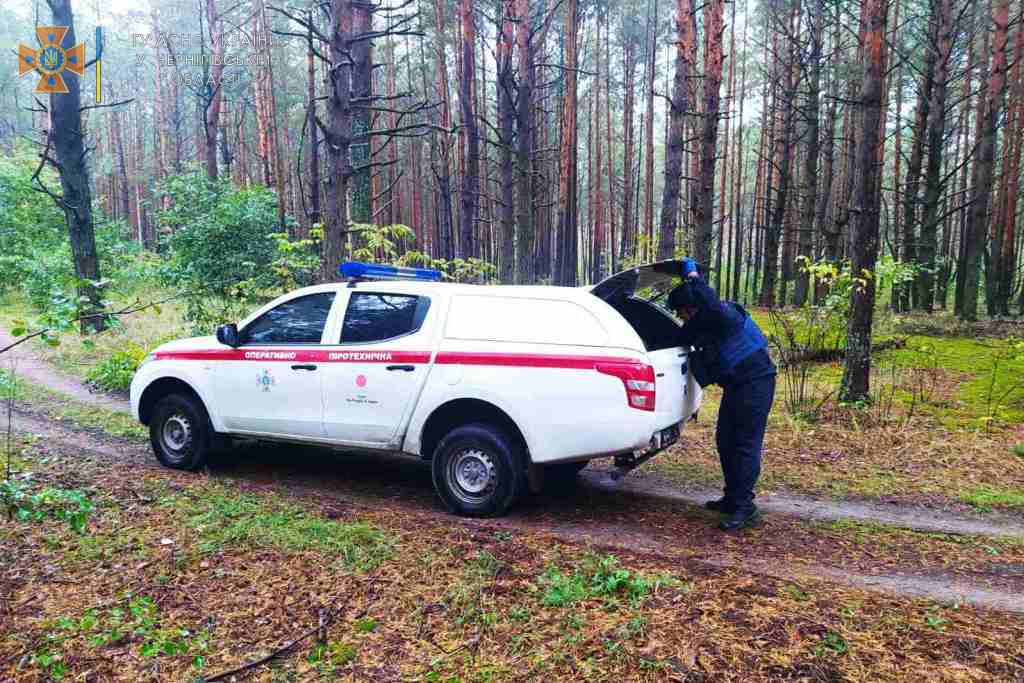 Біля села Бирине на Чернігівщині знешкодили майже 200 снарядів (Фото)